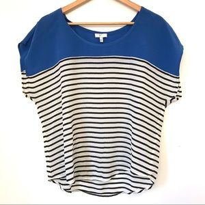 Joie Agacia Blue Striped Silk Boxy Top